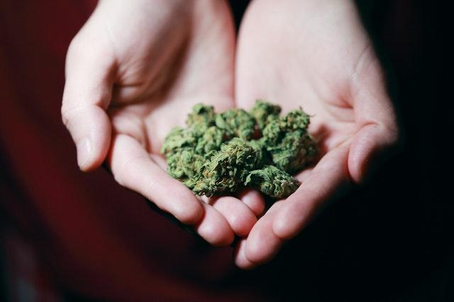 Marijuana Addiction And Testing