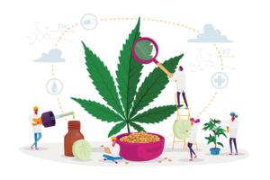 Overcoming Cannabis Addiction